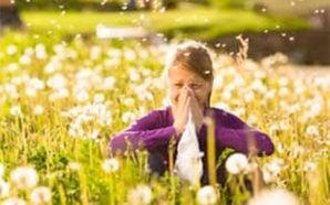 Allergie primaverili, rimedi naturali per prevenirle e combatterle