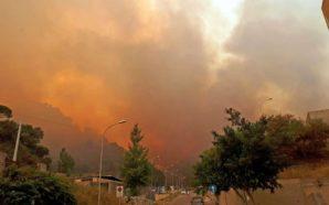+++Incendio Vesuvio: tutti gli aggiornamenti paese per paese+++ A Ottaviano…