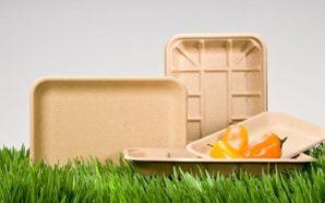 Packaging cibo: sempre più imballaggi compostabili