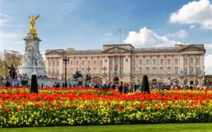 Cercasi lavapiatti per Buckingham Palace