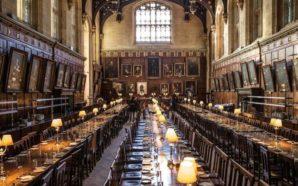 Harry Potter: nuovo corso di studi all'università