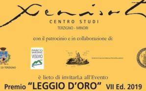 """Terzigno. Premio """"Leggio d'Oro"""" al Magnifico Rettore Gaetano Manfredi"""