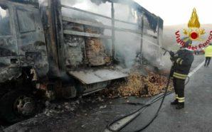 A fuoco un autocarro- traffico in tilt sull'A16